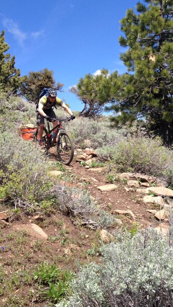 Round Mountain mountain biking
