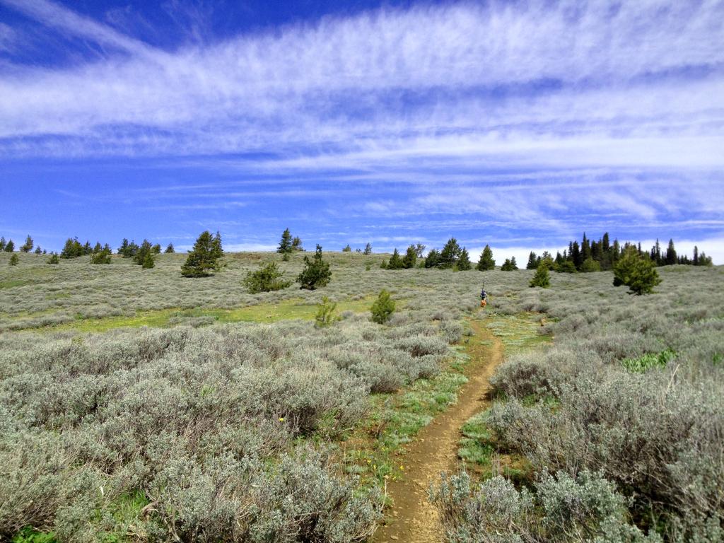 Lookout Mountain biking