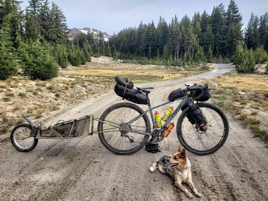 Biking on a gravel road in central Oregon with a dog riding in a BOB trailer.