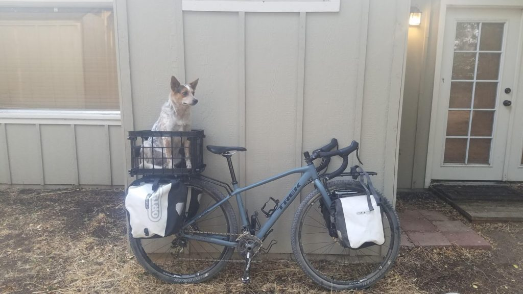 Bikepacking with a dog in central Oregon